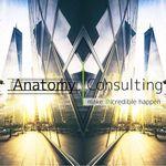 Anatomy Consulting profile image.