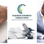 Business Dynamics Consultants (Pty) Ltd profile image.
