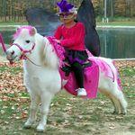 Fairytale Pony Parties profile image.