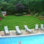 Grass Roots Services (UK) Ltd profile image.