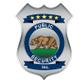 Public Security, Inc. logo
