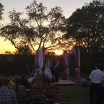 Weddings to go of Missouri OFFICANT profile image.
