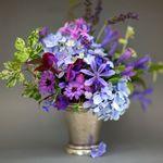 Bay Hill Florist profile image.