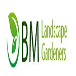 BM landscape Gardeners  profile image.