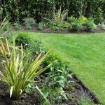 Plant life garden and groundscare profile image.