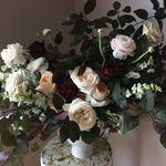 Botany Floral Studio profile image.