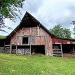Tune Farm Event Barn & Wedding Venue profile image.