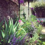 Lucy Sara Gardens profile image.
