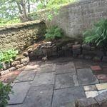 Samantha's garden care  profile image.