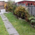 Jason Loh Garden Design & Garden Care profile image.