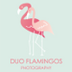 Duo Flamingos logo