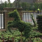 GSL Gardening Services profile image.