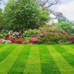 Wickham Bishops Landscapes profile image.