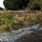 Fell Greave Gardening and Design profile image.