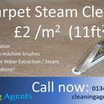 Cleaning Agents Ltd profile image.