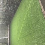 Green leaf Tree and garden services profile image.