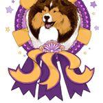 Star Maker Dog Training profile image.