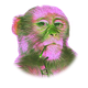 Eccentric Monkey Digital Marketing Services logo
