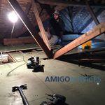 AMIGO SERVICES GROUP LTD profile image.