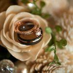 Nicole Hollenkamp Photography profile image.