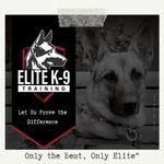 Elite K-9 Training LLC profile image.
