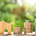 Stephen Thomas - Mortgage & Protection Adviser profile image.