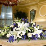 Citti's Florist profile image.