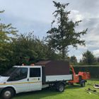Pinewood tree services and landscapes
