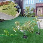 ForeverLawn® Ltd profile image.