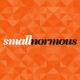 Smallnormous LLC logo