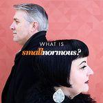 Smallnormous LLC profile image.