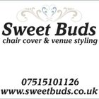 Sweet Buds Chair Cover & Venue Styling