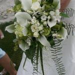Lady Flora profile image.