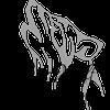 Silver Wolf Events Ltd profile image
