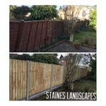 Staines landscapes profile image.
