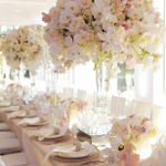 Events by abeke profile image.