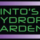 Pinto's Hydroponical Garden
