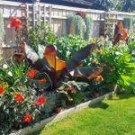 Gardeners of Eaden profile image.