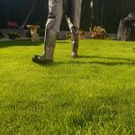 Green Lawns uk profile image.