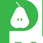 Pears Bookkeeping