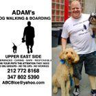 Adam's Dog Walking