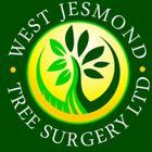 West Jesmond tree surgery