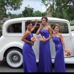 Silver Star Wedding Services profile image.