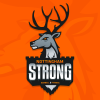 Nottingham Strong profile image