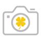 Meagan Dwyer Photography logo