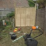 Shane's Painting and Gardening services. profile image.
