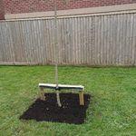 Anstis Grounds & Gardens profile image.