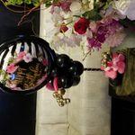 1 Moe Balloon profile image.