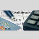 Reliant Repair Credit profile image.