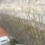 Agm roofing and property maintenance profile image.